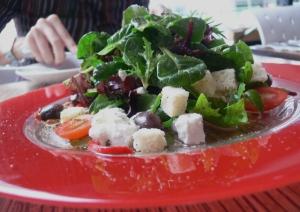 Gourmet Plus Salad