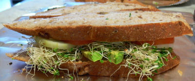 Tomato Cucumber Avocado Bell Peppers Alfalfa Sprout Pickle and Cream Cheese Sandwich in Whole Wheat Walnut Bread (whew)
