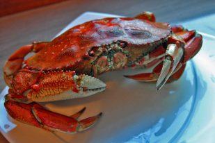 AlaskanCrab